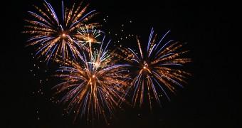 firework, dshs, dutch sport horse sales