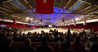 dutch sport horse sales, dshs, paardenveiling, stal hendrix